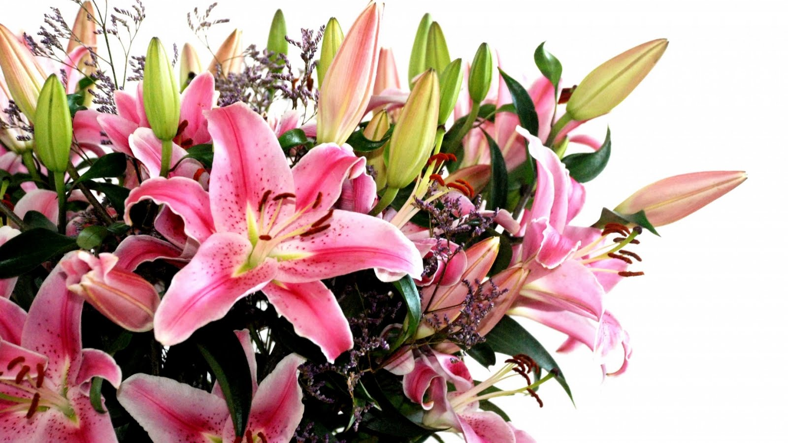 bouquet_of_lilies.jpg
